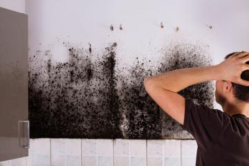 Schwarzer Schimmel an der Wand